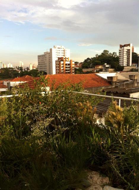 SkyGarden Telhados verdes - telhado ecologico de cerrado