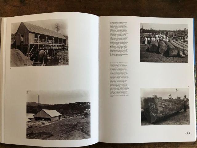 Fotografias de Claro Augusto Jansson no livro Remanescentes da Mata Atlântica 11